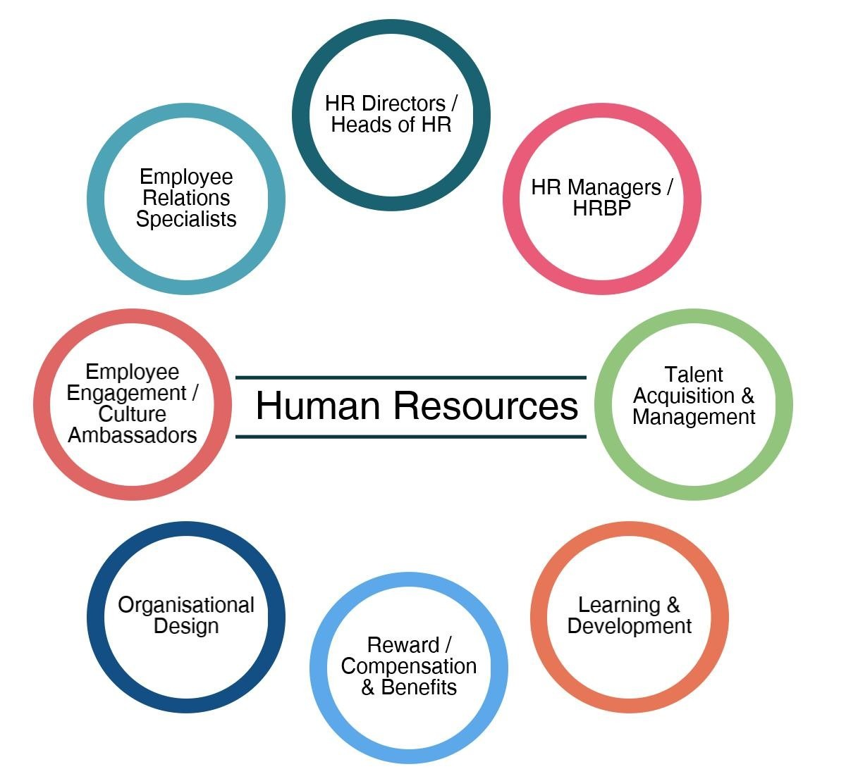 culture hrm Human resource management plays a new role in learning organizations learning organization is supported by a learning culture where people work together to.